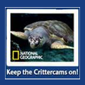 national geographic critter cam photo